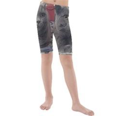 British Shorthair Grey Kids  Mid Length Swim Shorts