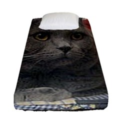 British Shorthair Grey Fitted Sheet (Single Size)