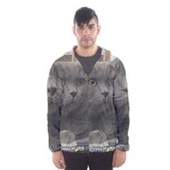 British Shorthair Grey Hooded Wind Breaker (Men)