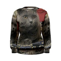 British Shorthair Grey Women s Sweatshirt