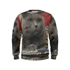 British Shorthair Grey Kids  Sweatshirt