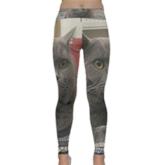 British Shorthair Grey Classic Yoga Leggings