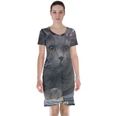 British Shorthair Grey Short Sleeve Nightdress