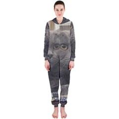 British Shorthair Grey Hooded Jumpsuit (Ladies)