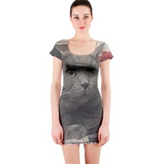 British Shorthair Grey Short Sleeve Bodycon Dress