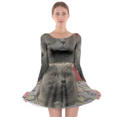 British Shorthair Grey Long Sleeve Skater Dress