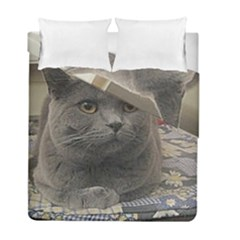 British Shorthair Grey Duvet Cover Double Side (Full/ Double Size)