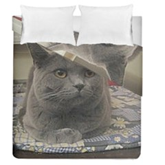 British Shorthair Grey Duvet Cover Double Side (Queen Size)