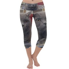 British Shorthair Grey Capri Yoga Leggings