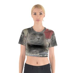 British Shorthair Grey Cotton Crop Top