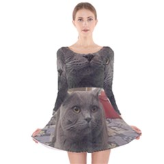 British Shorthair Grey Long Sleeve Velvet Skater Dress
