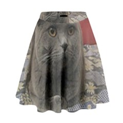 British Shorthair Grey High Waist Skirt
