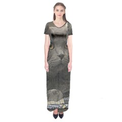 British Shorthair Grey Short Sleeve Maxi Dress