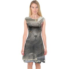 British Shorthair Grey Capsleeve Midi Dress