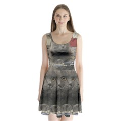 British Shorthair Grey Split Back Mini Dress