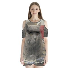 British Shorthair Grey Shoulder Cutout Velvet  One Piece