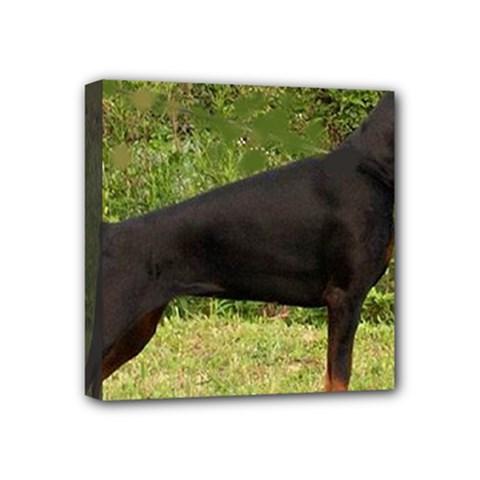 Doberman Pinscher Black Full Mini Canvas 4  x 4