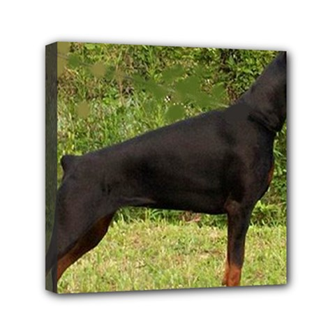 Doberman Pinscher Black Full Mini Canvas 6  x 6