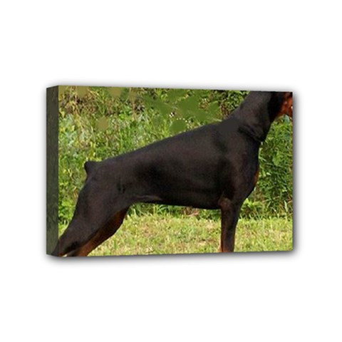 Doberman Pinscher Black Full Mini Canvas 6  x 4