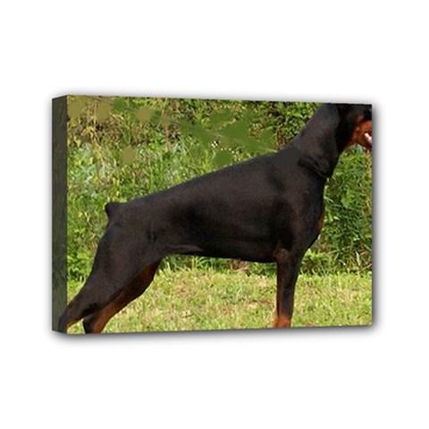 Doberman Pinscher Black Full Mini Canvas 7  x 5