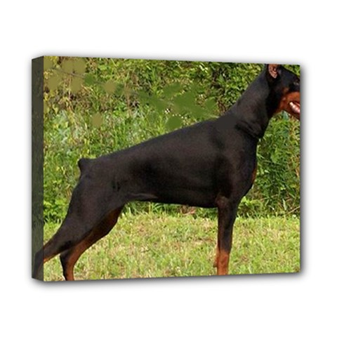Doberman Pinscher Black Full Canvas 10  x 8