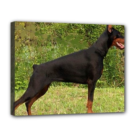 Doberman Pinscher Black Full Canvas 14  x 11