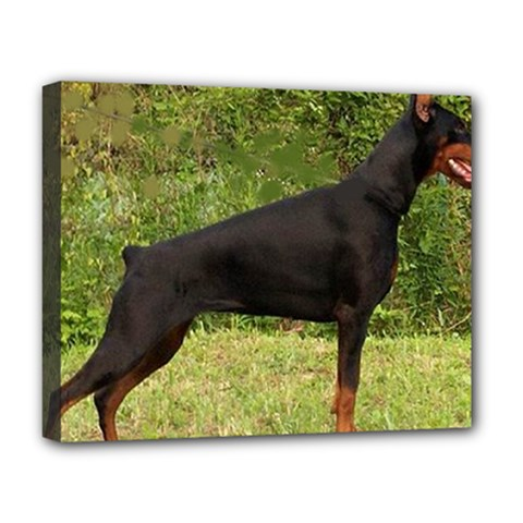 Doberman Pinscher Black Full Deluxe Canvas 20  x 16