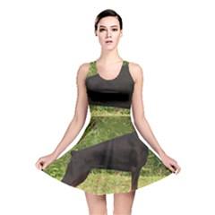 Doberman Pinscher Black Full Reversible Skater Dress