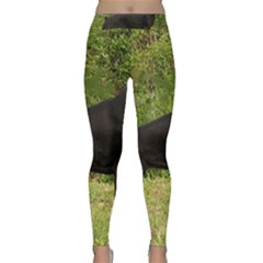 Doberman Pinscher Black Full Classic Yoga Leggings