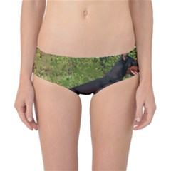 Doberman Pinscher Black Full Classic Bikini Bottoms