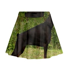 Doberman Pinscher Black Full Mini Flare Skirt