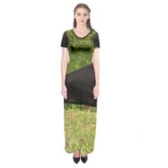 Doberman Pinscher Black Full Short Sleeve Maxi Dress