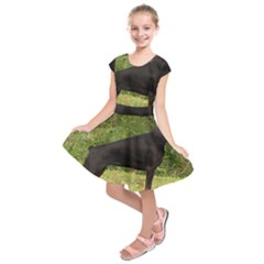 Doberman Pinscher Black Full Kids  Short Sleeve Dress