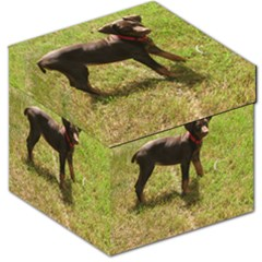 Red Doberman Puppy Storage Stool 12