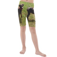 Red Doberman Puppy Kids  Mid Length Swim Shorts