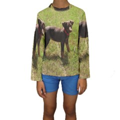 Red Doberman Puppy Kids  Long Sleeve Swimwear