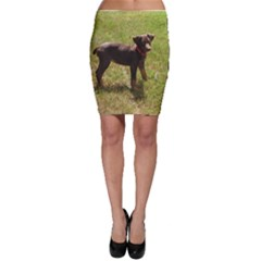 Red Doberman Puppy Bodycon Skirt