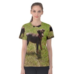 Red Doberman Puppy Women s Cotton Tee