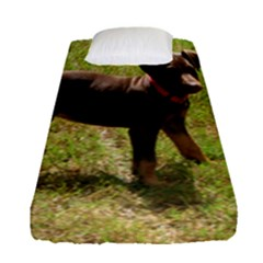 Red Doberman Puppy Fitted Sheet (Single Size)