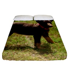 Red Doberman Puppy Fitted Sheet (King Size)