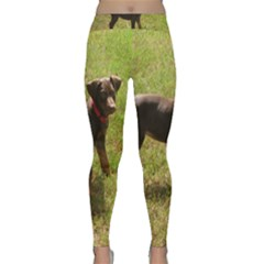 Red Doberman Puppy Classic Yoga Leggings