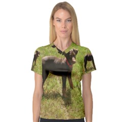 Red Doberman Puppy Women s V-Neck Sport Mesh Tee
