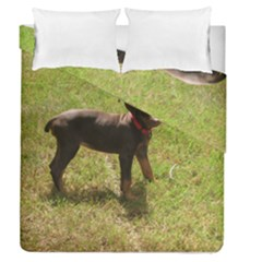 Red Doberman Puppy Duvet Cover Double Side (Queen Size)