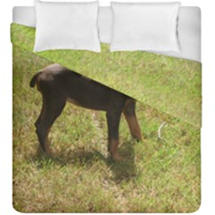 Red Doberman Puppy Duvet Cover Double Side (King Size)