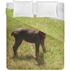 Red Doberman Puppy Duvet Cover Double Side (California King Size)