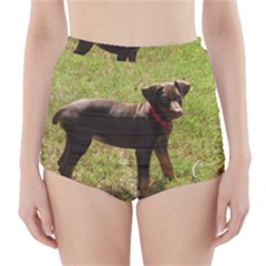 Red Doberman Puppy High-Waisted Bikini Bottoms
