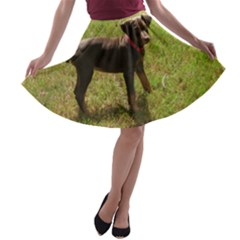 Red Doberman Puppy A-line Skater Skirt