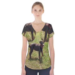 Red Doberman Puppy Short Sleeve Front Detail Top