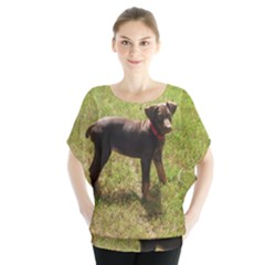 Red Doberman Puppy Blouse