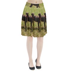 Red Doberman Puppy Pleated Skirt